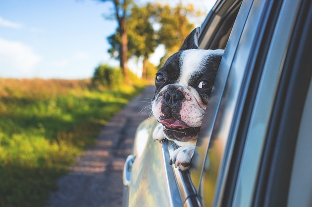 Some Practical Reasons for Choosing Car Rentals over Using Your Own Ride